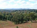 View from the Biltmore House